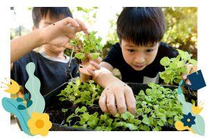 Growing Green Junior - Social Skills Group