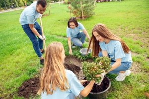 Adult Program - Volunteering